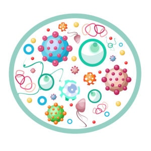 Set Of Various Microbes, Viruses. Diseases, Bacteria. Macrovirus