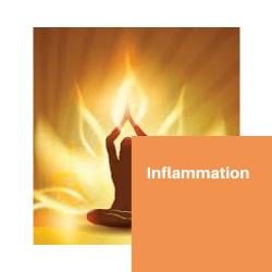 6 Inflammation